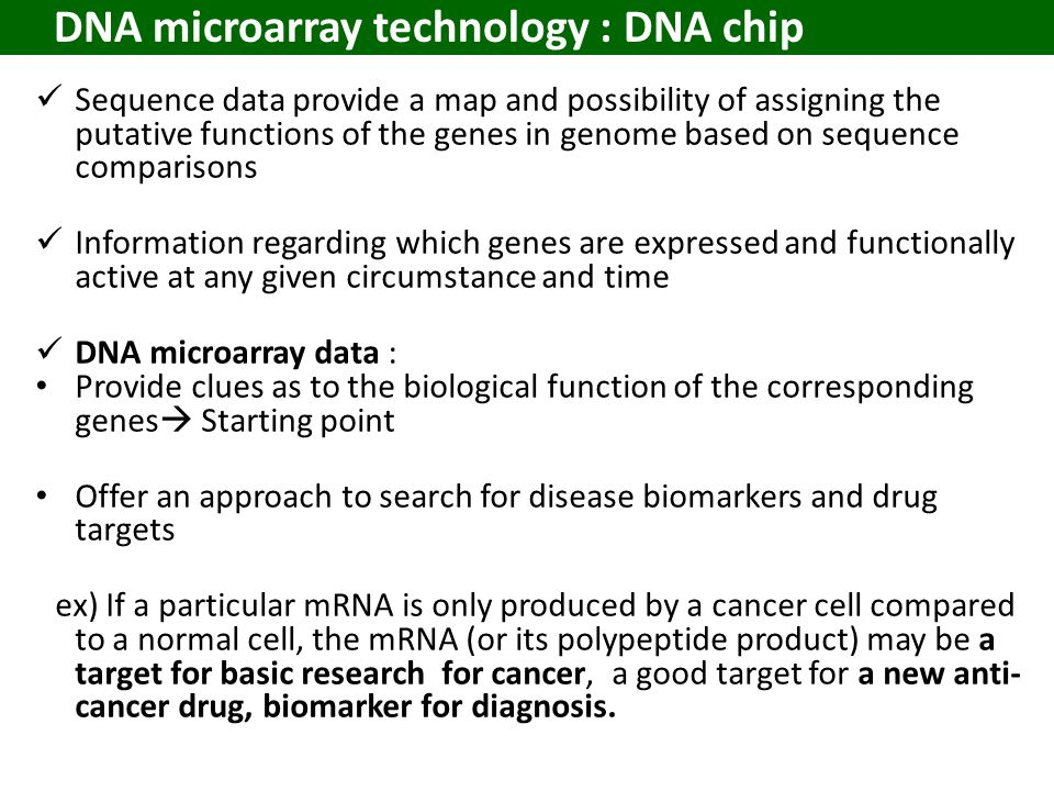 DNA microarray technology : DNA chip Sequence data provide a map and possibility of assigning the putative functions of the genes in genome based on sequence comparisons Information regarding which genes are expressed and functionally active at any given circumstance and time DNA microarray data : Provide clues as to the biological function of the corresponding genes  Starting point Offer an approach to search for disease biomarkers and drug targets ex) If a particular mRNA is only produced by a cancer cell compared to a normal cell, the mRNA (or its polypeptide product) may be a target for basic research for cancer, a good target for a new anti- cancer drug, biomarker for diagnosis.