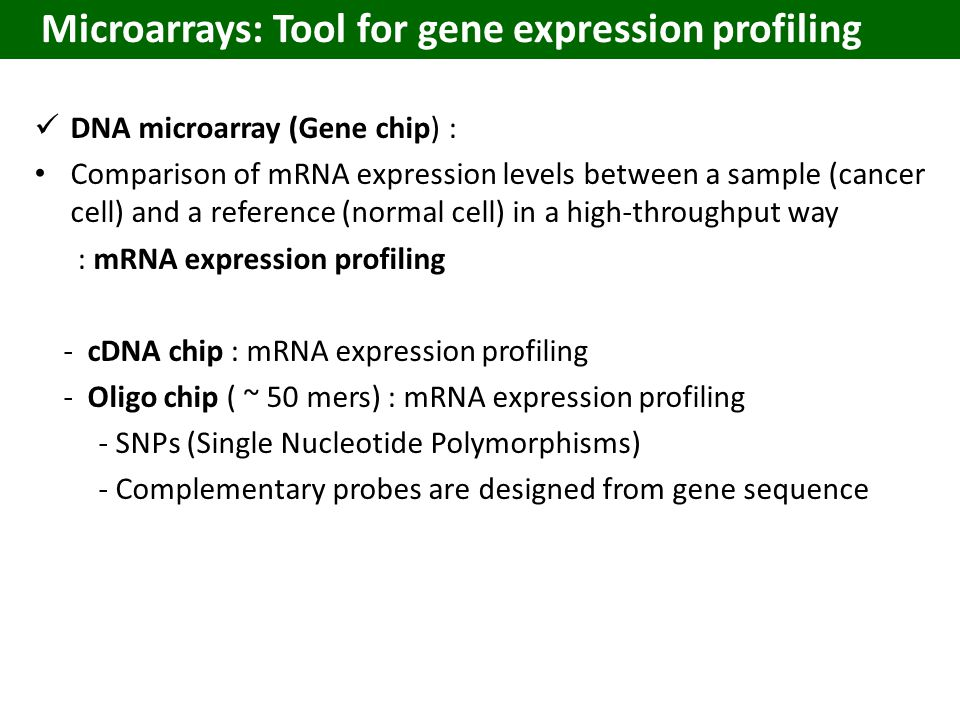 DNA microarray (Gene chip) : Comparison of mRNA expression levels between a sample (cancer cell) and a reference (normal cell) in a high-throughput way : mRNA expression profiling - cDNA chip : mRNA expression profiling - Oligo chip ( ~ 50 mers) : mRNA expression profiling - SNPs (Single Nucleotide Polymorphisms) - Complementary probes are designed from gene sequence Microarrays: Tool for gene expression profiling