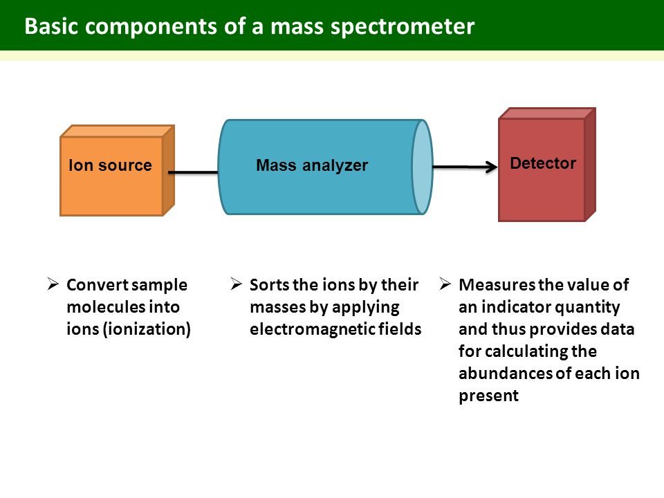 Basic components of a mass spectrometer  Convert sample molecules into ions (ionization) Ion sourceMass analyzer Detector  Sorts the ions by their masses by applying electromagnetic fields  Measures the value of an indicator quantity and thus provides data for calculating the abundances of each ion present