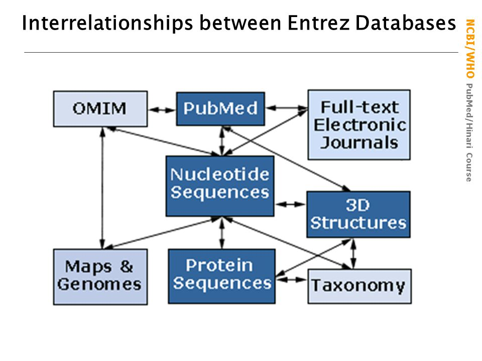 NCBI/WHO PubMed/Hinari Course Interrelationships between Entrez Databases