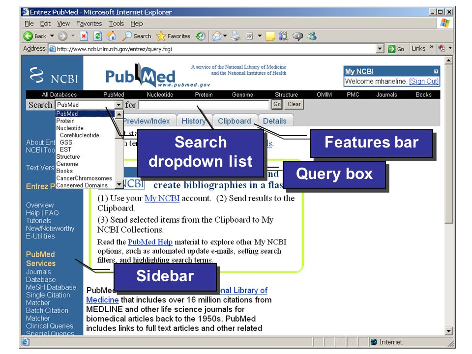© 2006 Evidence-based Chiropractic 3 Features bar Query box Sidebar Search dropdown list