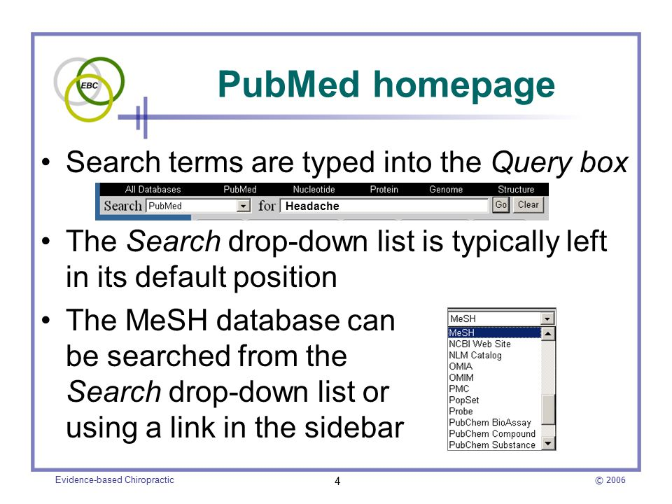 © 2006 Evidence-based Chiropractic 4 Search terms are typed into the Query box The Search drop-down list is typically left in its default position The