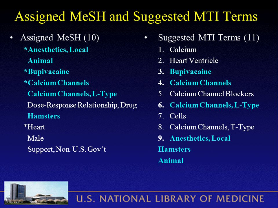 Assigned MeSH and Suggested MTI Terms Assigned MeSH (10) *Anesthetics, Local Animal *Bupivacaine *Calcium Channels Calcium Channels, L-Type Dose-Response Relationship, Drug Hamsters *Heart Male Support, Non-U.S.