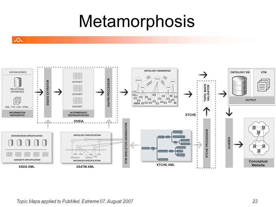 Topic Maps applied to PubMed, Extreme'07, August 200723 Metamorphosis