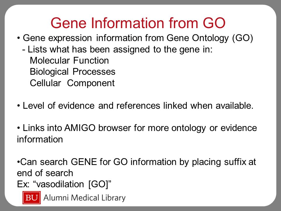 Gene Information from GO Gene expression information from Gene Ontology (GO) - Lists what has been assigned to the gene in: Molecular Function Biological Processes Cellular Component Level of evidence and references linked when available.