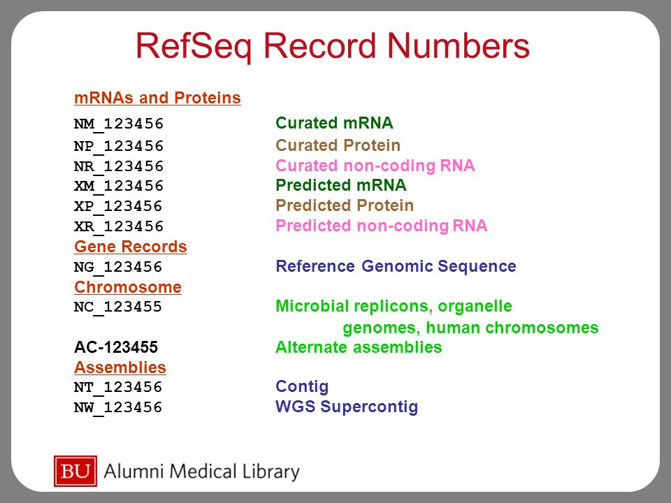 RefSeq Record Numbers mRNAs and Proteins NM_123456 Curated mRNA NP_123456 Curated Protein NR_123456 Curated non-coding RNA XM_123456 Predicted mRNA XP_123456 Predicted Protein XR_123456 Predicted non-coding RNA Gene Records NG_123456 Reference Genomic Sequence Chromosome NC_123455 Microbial replicons, organelle genomes, human chromosomes AC-123455 Alternate assemblies Assemblies NT_123456 Contig NW_123456 WGS Supercontig