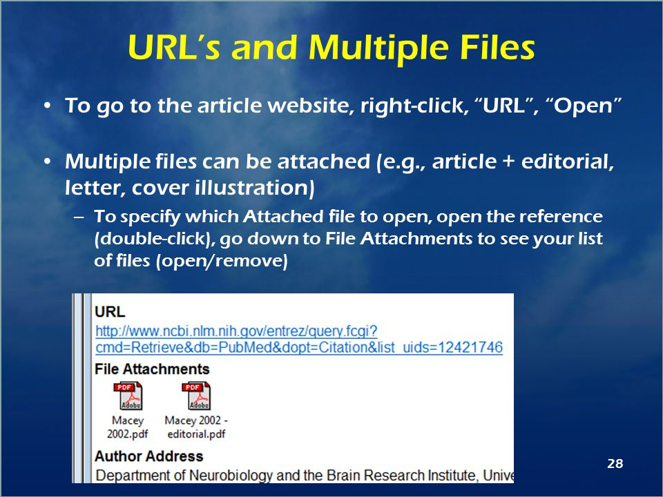 28 URL's and Multiple Files To go to the article website, right-click, URL , Open Multiple files can be attached (e.g., article + editorial, letter, cover illustration) –To specify which Attached file to open, open the reference (double-click), go down to File Attachments to see your list of files (open/remove)