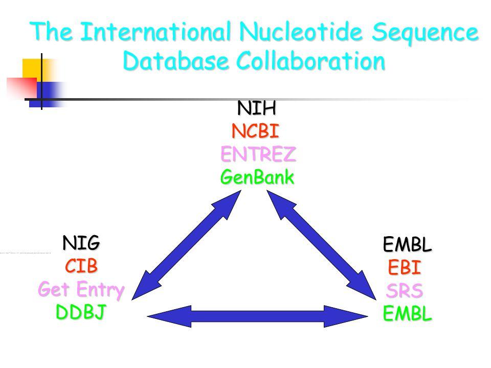 The International Nucleotide Sequence Database Collaboration NIH NIH NCBI NCBIENTREZGenBank NIG NIG CIB CIB Get Entry Get Entry DDBJ DDBJ EMBL EMBL EBI EBI SRS SRS EMBL EMBL