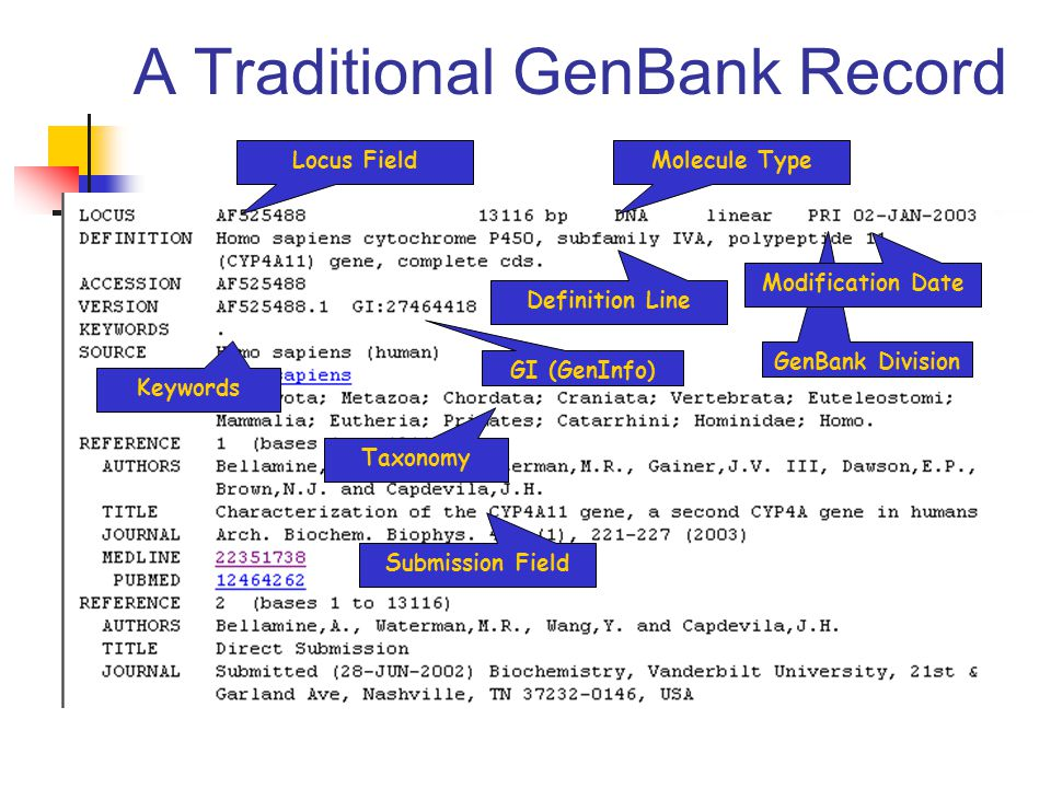 A Traditional GenBank Record Locus FieldMolecule Type GenBank Division Modification Date Definition Line Taxonomy GI (GenInfo) Keywords Submission Field