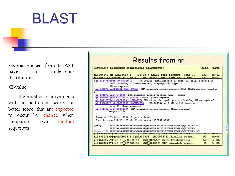 BLAST Scores we get from BLAST have an underlying distribution.