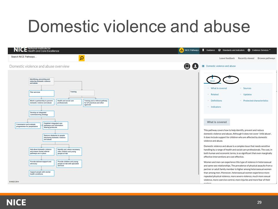 Domestic violence and abuse 29