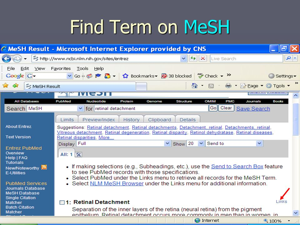 Search by Term