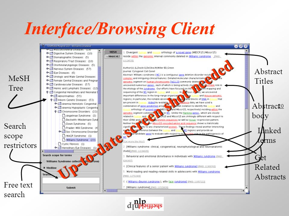 20 Interface/Browsing Client Abstract body MeSH Tree Abstract Titles Free text search Search scope restrictors Linked terms Get Related Abstracts Up-to-date screen shot needed
