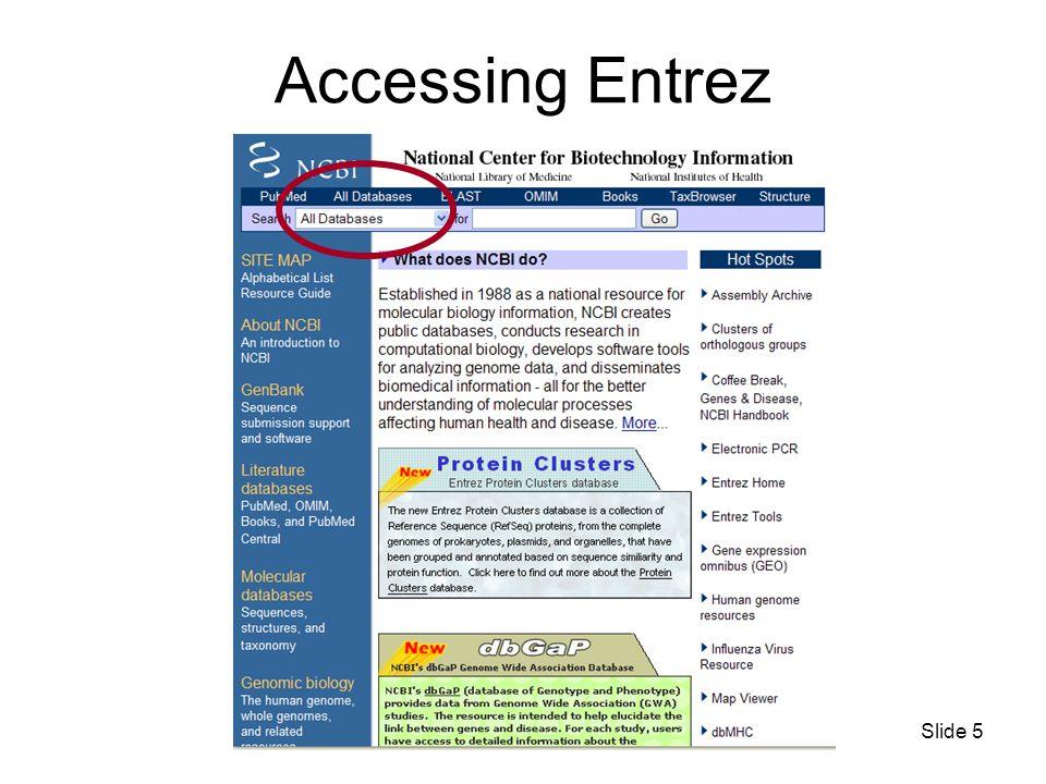 Slide 5 Accessing Entrez