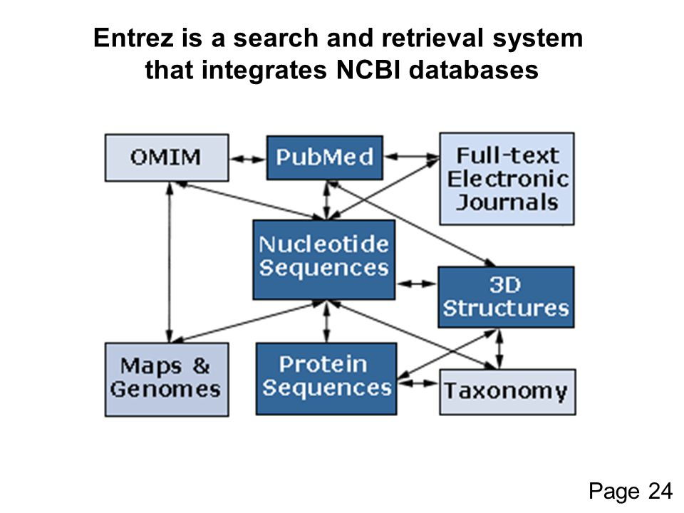 Entrez is a search and retrieval system that integrates NCBI databases Page 24