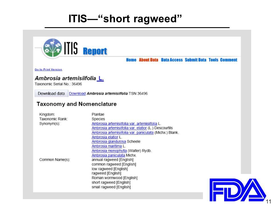 11 ITIS— short ragweed 11