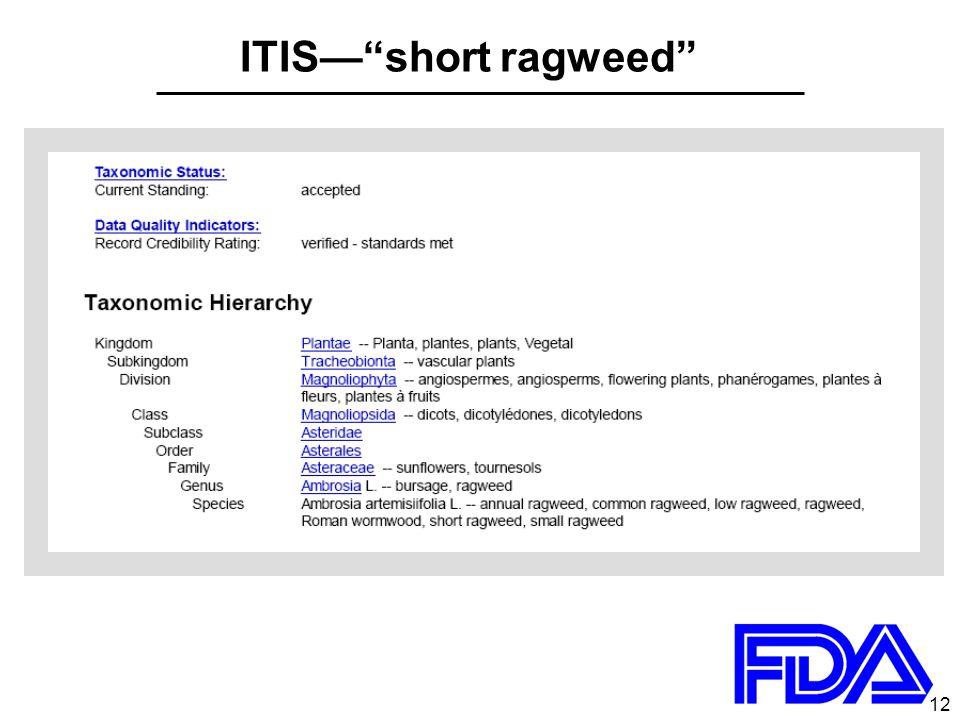 12 ITIS— short ragweed
