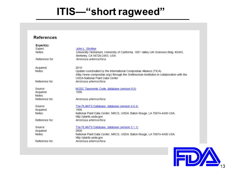 13 ITIS— short ragweed 13
