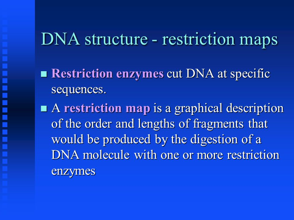 DNA structure - restriction maps Restriction enzymes cut DNA at specific sequences. Restriction enzymes cut DNA at specific sequences. A restriction m