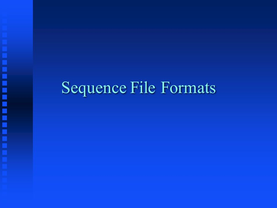 Sequence File Formats