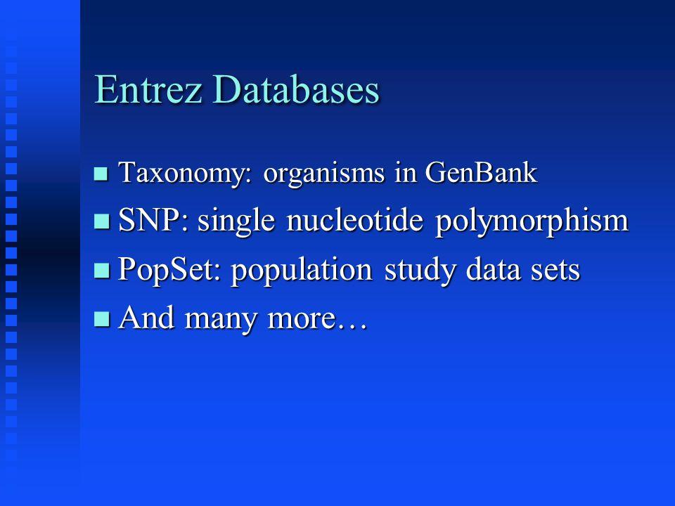 Entrez Databases Taxonomy: organisms in GenBank Taxonomy: organisms in GenBank SNP: single nucleotide polymorphism SNP: single nucleotide polymorphism PopSet: population study data sets PopSet: population study data sets And many more… And many more…