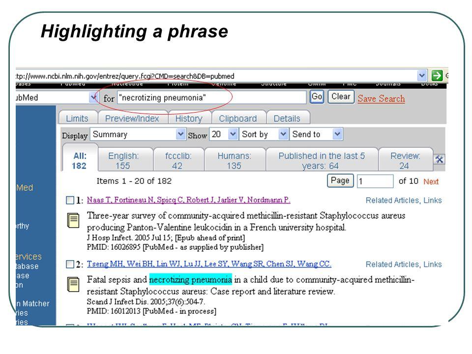Highlighting a phrase
