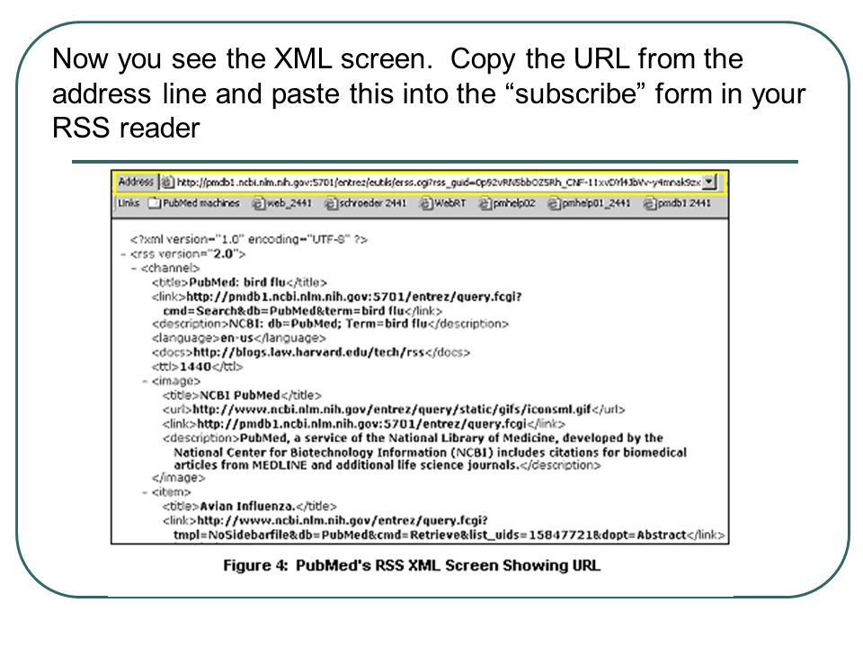 Now you see the XML screen.