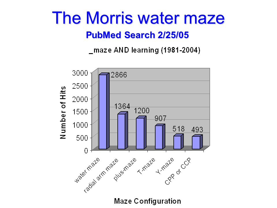 The Morris water maze PubMed Search 2/25/05