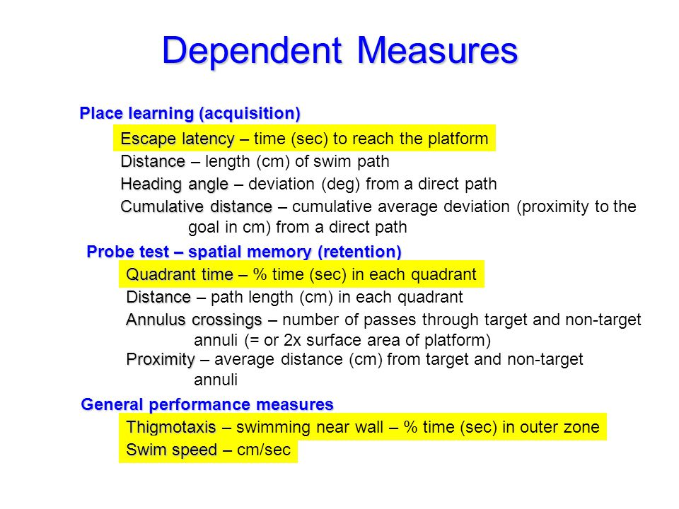 Dependent Measures Place learning (acquisition) Escapelatency Escape latency – time (sec) to reach the platform Distance Distance – length (cm) of swim path Heading angle Heading angle – deviation (deg) from a direct path Cumulative distance Cumulative distance – cumulative average deviation (proximity to the goal in cm) from a direct path Probe test – spatial memory (retention) Quadrant time Quadrant time – % time (sec) in each quadrant Annulus crossings Annulus crossings – number of passes through target and non-target annuli (= or 2x surface area of platform) Proximity Proximity – average distance (cm) from target and non-target annuli Distance Distance – path length (cm) in each quadrant Thigmotaxis Thigmotaxis – swimming near wall – % time (sec) in outer zone General performance measures Swim speed Swim speed – cm/sec