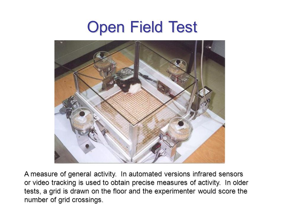 Open Field Test A measure of general activity.