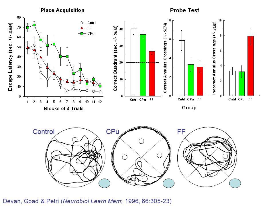 Devan, Goad & Petri (Neurobiol Learn Mem; 1996, 66:305-23) ControlCPuFF