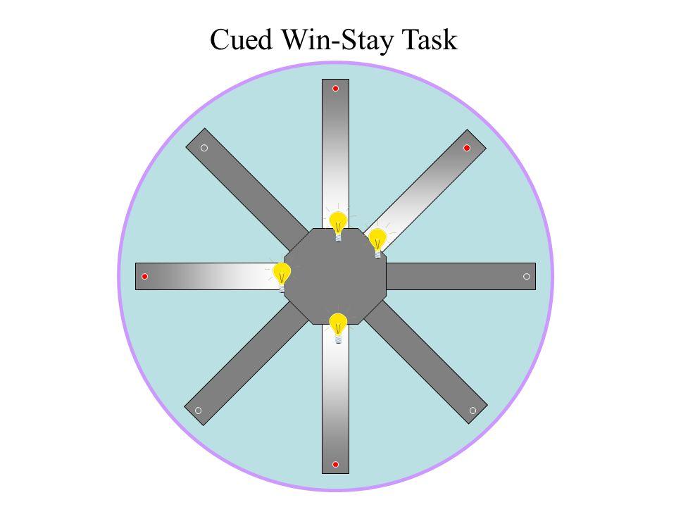 Cued Win-Stay Task