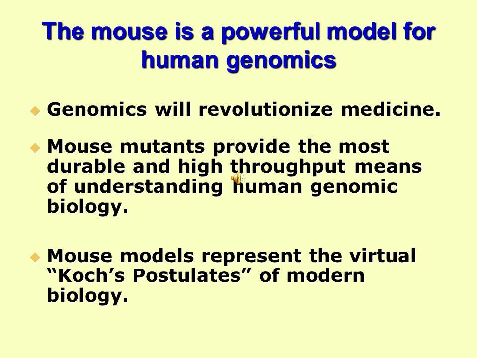 Genomic Medicine 1. The human genome is sequenced The genetic code has been broken 2.