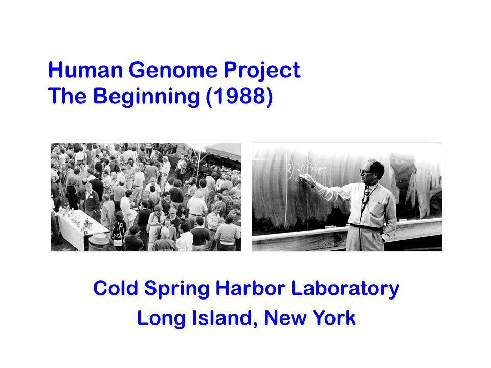 Human Genome Project The Beginning (1988) Cold Spring Harbor Laboratory Long Island, New York