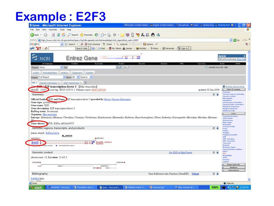Example : E2F3