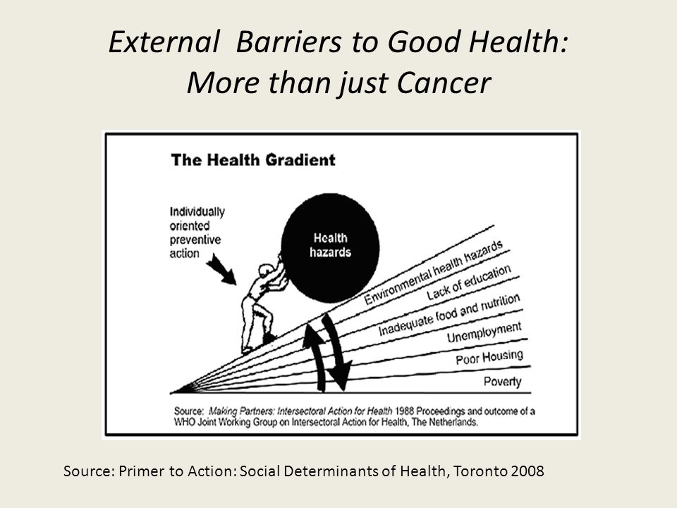 External Barriers to Good Health: More than just Cancer Source: Primer to Action: Social Determinants of Health, Toronto 2008