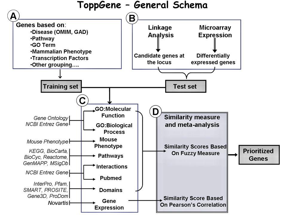 ToppGene – General Schema
