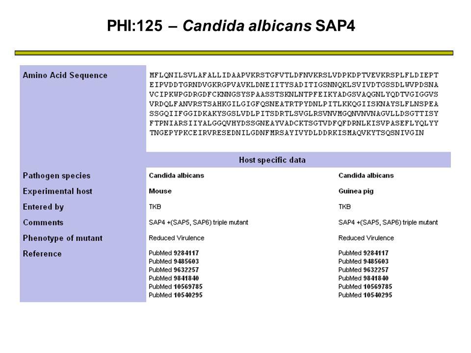 PHI:125 – Candida albicans SAP4