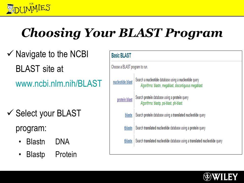 Choosing Your BLAST Program Navigate to the NCBI BLAST site at www.ncbi.nlm.nih/BLAST Select your BLAST program: Blastn DNA BlastpProtein