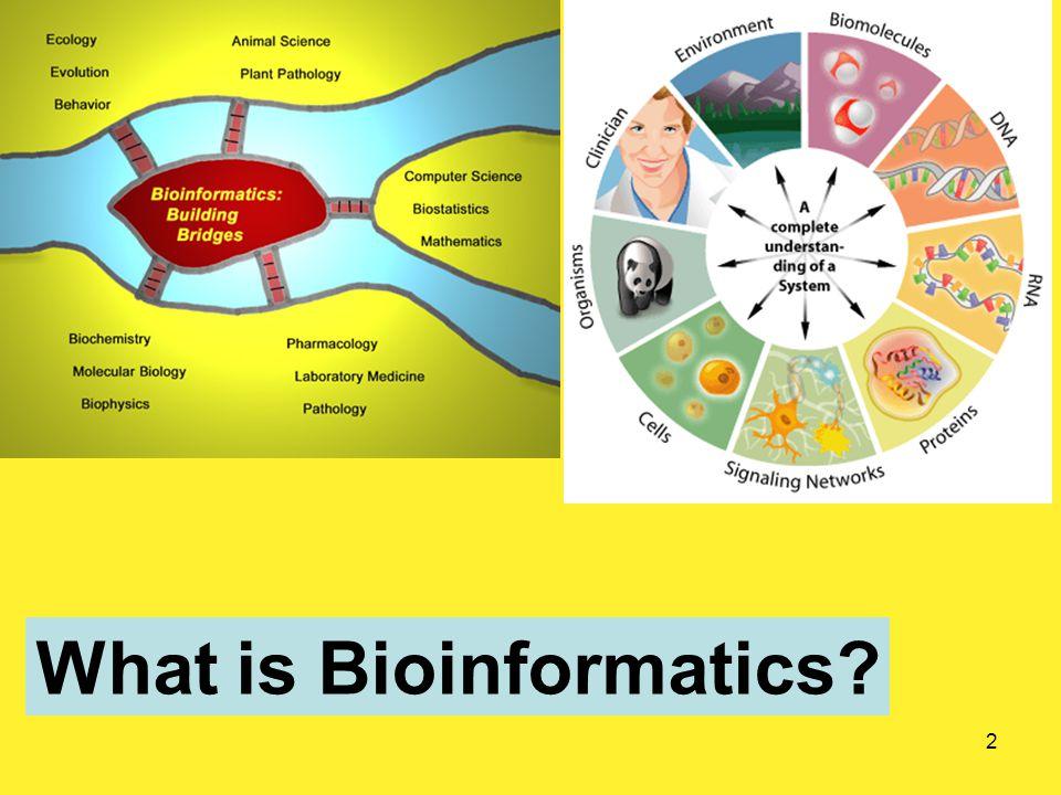 2 What is Bioinformatics