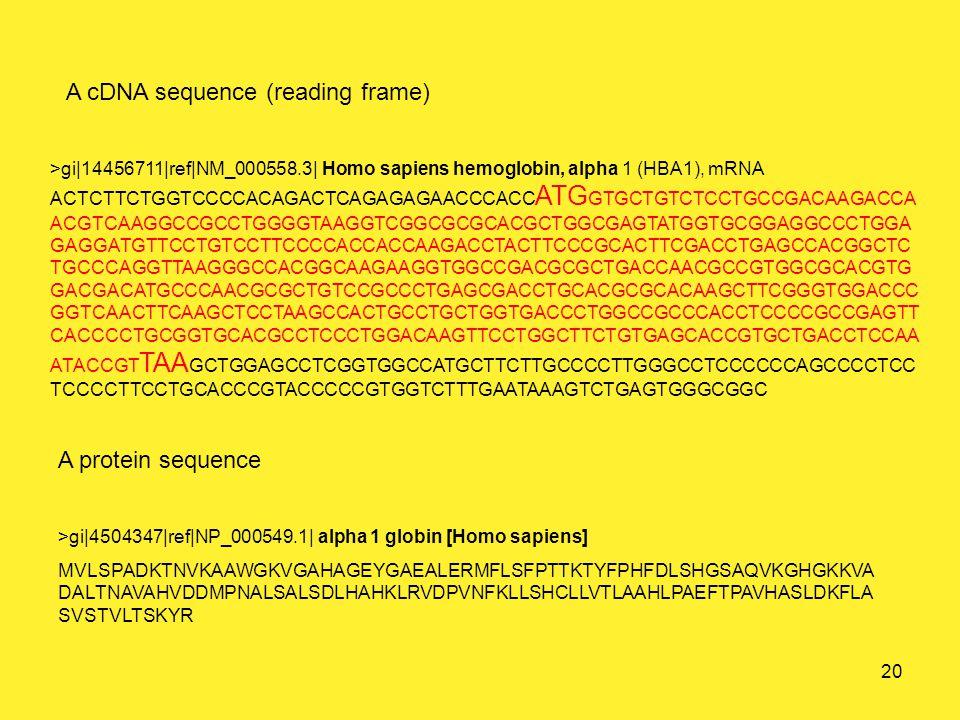 A cDNA sequence (reading frame) A protein sequence >gi|14456711|ref|NM_000558.3| Homo sapiens hemoglobin, alpha 1 (HBA1), mRNA ACTCTTCTGGTCCCCACAGACTCAGAGAGAACCCACC ATG GTGCTGTCTCCTGCCGACAAGACCA ACGTCAAGGCCGCCTGGGGTAAGGTCGGCGCGCACGCTGGCGAGTATGGTGCGGAGGCCCTGGA GAGGATGTTCCTGTCCTTCCCCACCACCAAGACCTACTTCCCGCACTTCGACCTGAGCCACGGCTC TGCCCAGGTTAAGGGCCACGGCAAGAAGGTGGCCGACGCGCTGACCAACGCCGTGGCGCACGTG GACGACATGCCCAACGCGCTGTCCGCCCTGAGCGACCTGCACGCGCACAAGCTTCGGGTGGACCC GGTCAACTTCAAGCTCCTAAGCCACTGCCTGCTGGTGACCCTGGCCGCCCACCTCCCCGCCGAGTT CACCCCTGCGGTGCACGCCTCCCTGGACAAGTTCCTGGCTTCTGTGAGCACCGTGCTGACCTCCAA ATACCGT TAA GCTGGAGCCTCGGTGGCCATGCTTCTTGCCCCTTGGGCCTCCCCCCAGCCCCTCC TCCCCTTCCTGCACCCGTACCCCCGTGGTCTTTGAATAAAGTCTGAGTGGGCGGC >gi|4504347|ref|NP_000549.1| alpha 1 globin [Homo sapiens] MVLSPADKTNVKAAWGKVGAHAGEYGAEALERMFLSFPTTKTYFPHFDLSHGSAQVKGHGKKVA DALTNAVAHVDDMPNALSALSDLHAHKLRVDPVNFKLLSHCLLVTLAAHLPAEFTPAVHASLDKFLA SVSTVLTSKYR 20