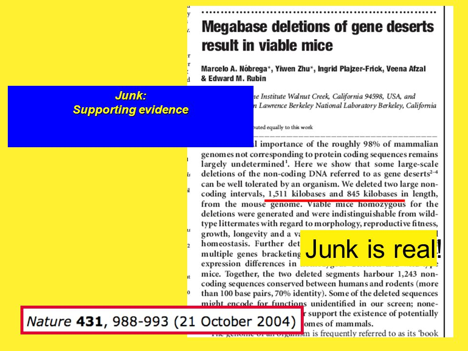 46 Junk is real! Junk: Supporting evidence