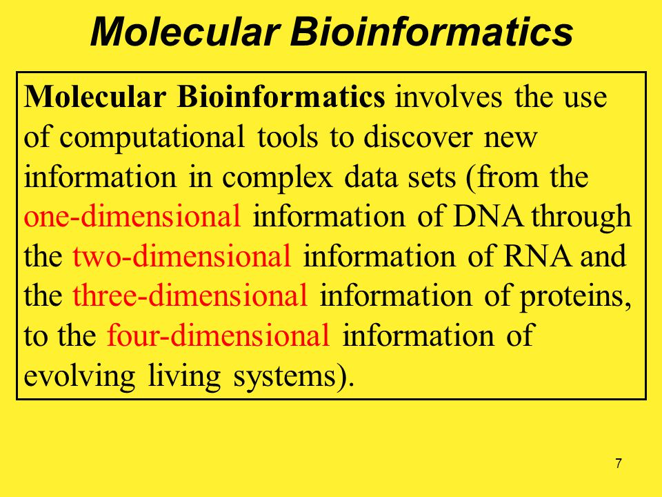 7 Molecular Bioinformatics Molecular Bioinformatics involves the use of computational tools to discover new information in complex data sets (from the one-dimensional information of DNA through the two-dimensional information of RNA and the three-dimensional information of proteins, to the four-dimensional information of evolving living systems).