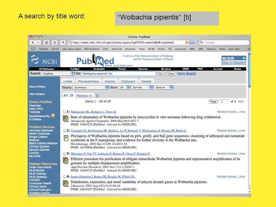 A search by title word: Wolbachia pipientis [ti]