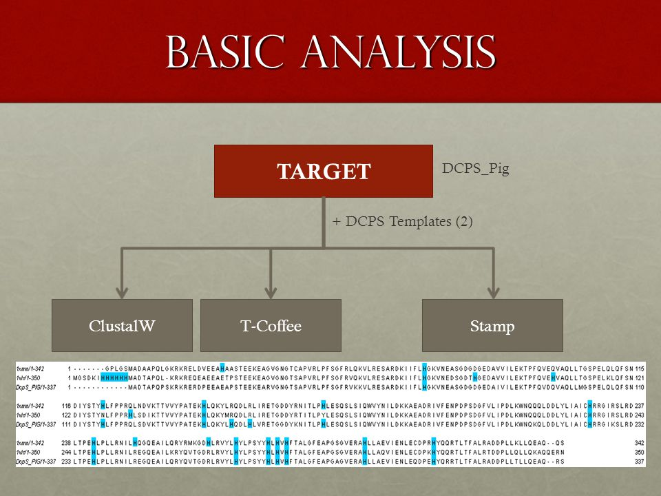 BASIC ANALYSIS TARGET DCPS_Pig ClustalWT-CoffeeStamp + DCPS Templates (2)
