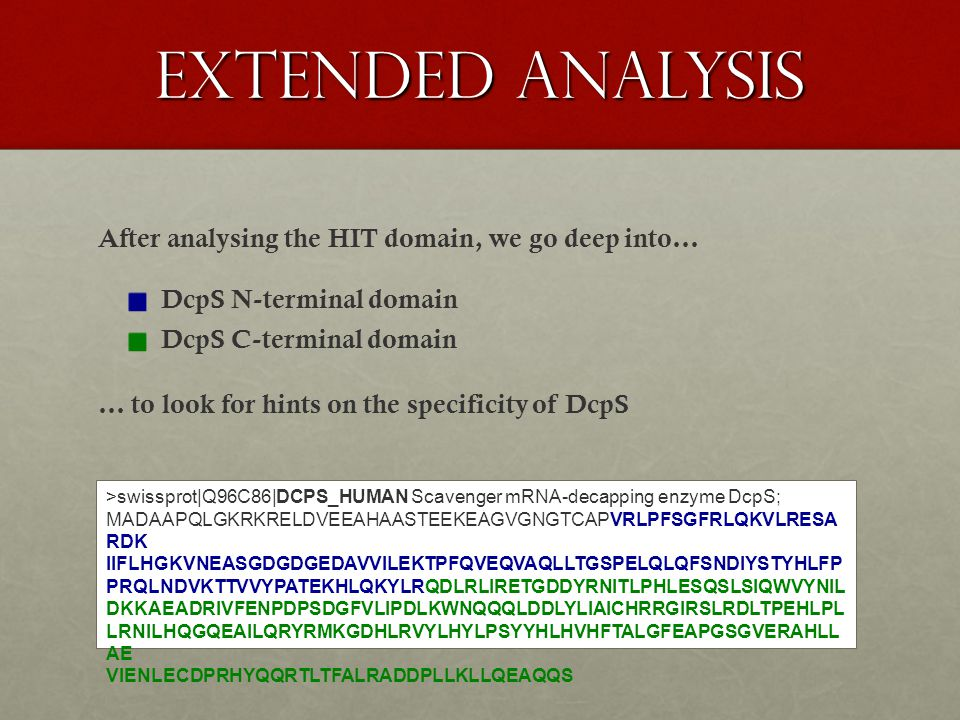 extended analysis After analysing the HIT domain, we go deep into… DcpS N-terminal domain DcpS C-terminal domain >swissprot|Q96C86|DCPS_HUMAN Scavenger mRNA-decapping enzyme DcpS; MADAAPQLGKRKRELDVEEAHAASTEEKEAGVGNGTCAPVRLPFSGFRLQKVLRESA RDK IIFLHGKVNEASGDGDGEDAVVILEKTPFQVEQVAQLLTGSPELQLQFSNDIYSTYHLFP PRQLNDVKTTVVYPATEKHLQKYLRQDLRLIRETGDDYRNITLPHLESQSLSIQWVYNIL DKKAEADRIVFENPDPSDGFVLIPDLKWNQQQLDDLYLIAICHRRGIRSLRDLTPEHLPL LRNILHQGQEAILQRYRMKGDHLRVYLHYLPSYYHLHVHFTALGFEAPGSGVERAHLL AE VIENLECDPRHYQQRTLTFALRADDPLLKLLQEAQQS … to look for hints on the specificity of DcpS