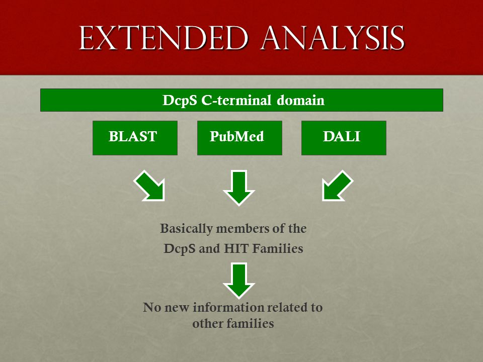 extended analysis Basically members of the DcpS and HIT Families No new information related to other families DcpS C-terminal domain BLASTDALIPubMed