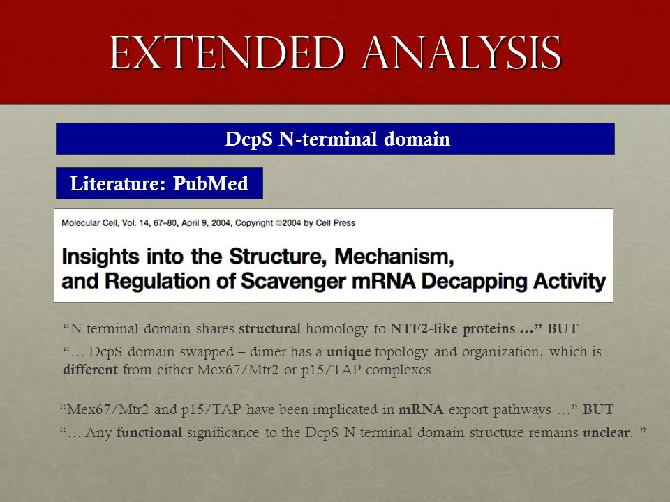 extended analysis DcpS N-terminal domain Literature: PubMed N-terminal domain shares structural homology to NTF2-like proteins … BUT … DcpS domain swapped – dimer has a unique topology and organization, which is different from either Mex67/Mtr2 or p15/TAP complexes Mex67/Mtr2 and p15/TAP have been implicated in mRNA export pathways … BUT … Any functional significance to the DcpS N-terminal domain structure remains unclear.
