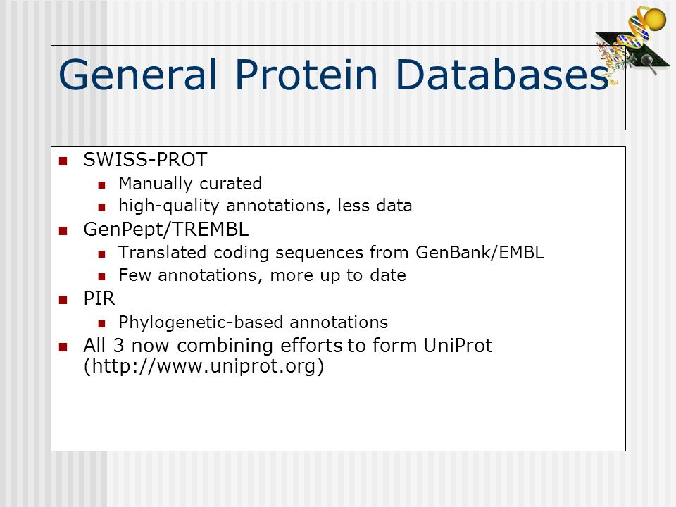 General Protein Databases SWISS-PROT Manually curated high-quality annotations, less data GenPept/TREMBL Translated coding sequences from GenBank/EMBL Few annotations, more up to date PIR Phylogenetic-based annotations All 3 now combining efforts to form UniProt (http://www.uniprot.org)