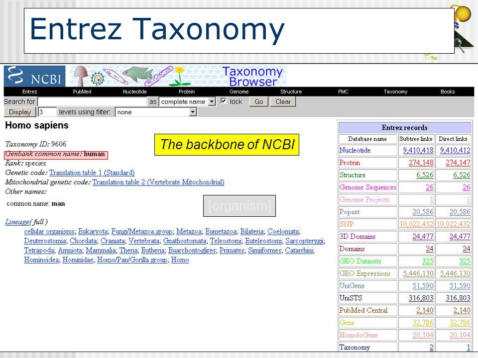 Entrez Taxonomy The backbone of NCBI [organism]